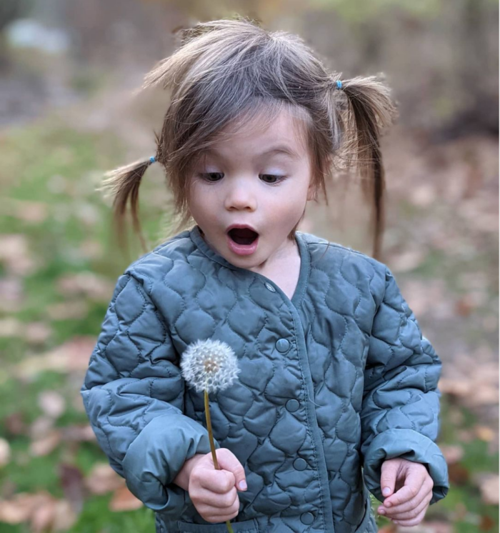 Ella about to blow the seeds off a dandelion